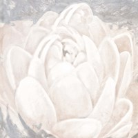 White Grey Flower II Fine-Art Print