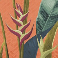 Heliconias with Leaves on Orange Fine-Art Print