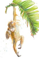 Monkeys in the Jungle I Fine-Art Print
