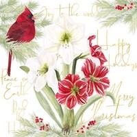 Merry Amaryllis II Fine-Art Print