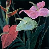 In Bloom II Fine-Art Print
