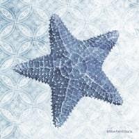 Starfish I Fine-Art Print