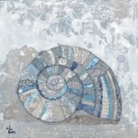 Blue-Gray Seashell II Fine-Art Print