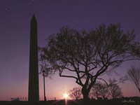 Nightfall at the Washington Monument Fine-Art Print