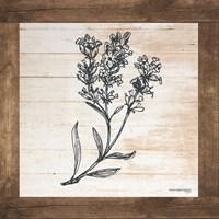 Petals on Planks - Lavender Fine-Art Print