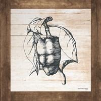 Petals on Planks - Pepper Fine-Art Print