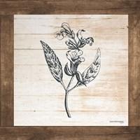 Petals on Planks - Sage Fine-Art Print