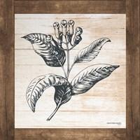 Petals on Planks - Allspice Fine-Art Print