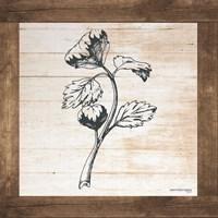 Petals on Planks - Celery Fine-Art Print