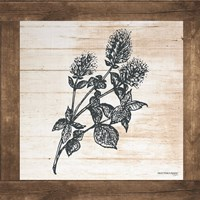 Petals on Planks - Mint Fine-Art Print