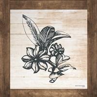 Petals on Planks - Anise Fine-Art Print
