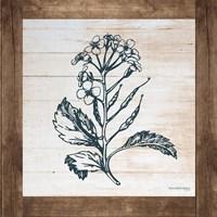 Petals on Planks - Mustard Fine-Art Print