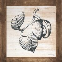 Petals on Planks - Nutmeg Fine-Art Print