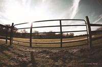 Farm Fence Fine-Art Print