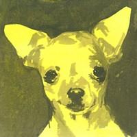 Pop Modern Dog VII Fine-Art Print