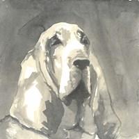 Sepia Modern Dog II Fine-Art Print