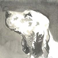 Sepia Modern Dog V Fine-Art Print