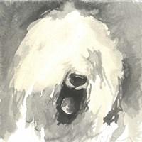Sepia Modern Dog IX Fine-Art Print