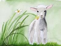 Baby Spring Animals IV Fine-Art Print