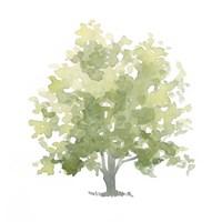 Lonely Oak II Fine-Art Print