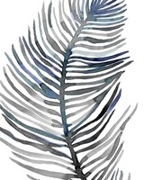 Blue Feathered Palm III Fine-Art Print