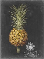Royal Brookshaw Pineapple II Fine-Art Print