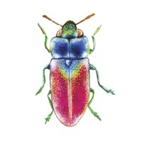 Buggin Out III Fine-Art Print