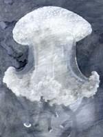 Indigo Jellyfish II Fine-Art Print