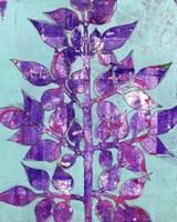 Purple Planta II Fine-Art Print