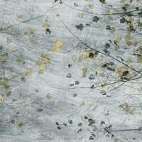 Seasonal Transition III Fine-Art Print