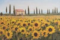Tuscan Memories I Fine-Art Print
