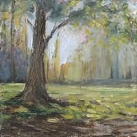 Path to the Tree I Fine-Art Print