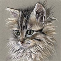 Kitten Portrait I Fine-Art Print