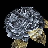 River Roses I Fine-Art Print