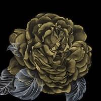 River Roses II Fine-Art Print