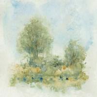 Fluid Landscape II Framed Print