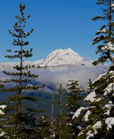 Mount Garibaldi From The Chief Overlook At The Summit Of The Sea To Sky Gondola Fine-Art Print