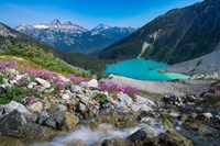 British Columbia, Meltwater Stream Flows Past Wildflowers Into Upper Joffre Lake Fine-Art Print