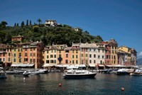 Italy, Province Of Genoa, Portofino, Fishing Village On The Ligurian Sea, Pastel Buildings Overlooking Harbor Fine-Art Print