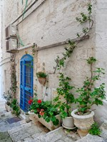 Italy, Puglia, Brindisi, Itria Valley, Ostuni Blue Door And Potted Plants Fine-Art Print