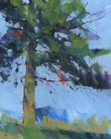 Gilfach Pine Fine-Art Print