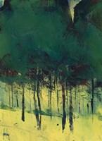 Pine Copse Fine-Art Print