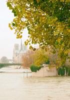 Notre Dame 2 Fine-Art Print