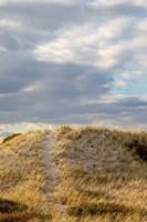 Dunes Trail Fine-Art Print
