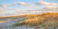 Grassy Dunes Panorama Fine-Art Print