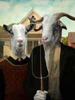 American Goat Fine-Art Print