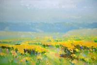 Yellow Valley Fine-Art Print