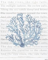Tide Rises Fine-Art Print