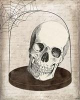 Skull Jar Fine-Art Print