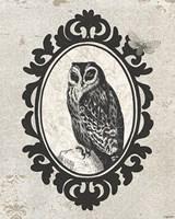 Celestial Owl Fine-Art Print
